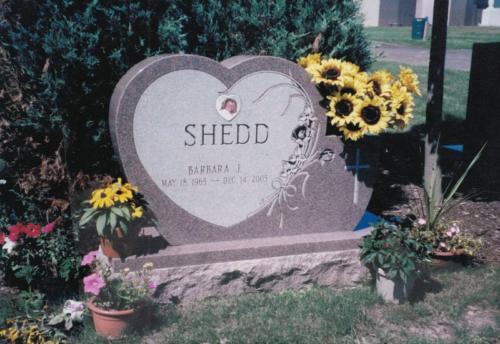 shedd-monument