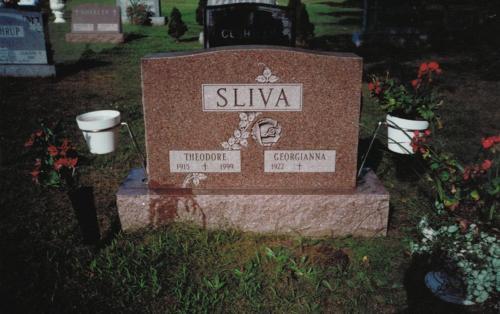 silva-monument